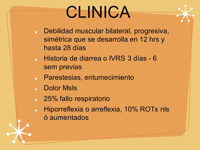 CLINICA Debilidad muscular bilateral, progresiva, simétrica que se desarrolla en 12 hrs y hasta 28 días Historia de diarrea o IVRS 3 días - 6 sem prev