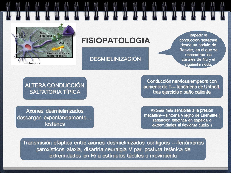 FISIOPATOLOGIA DESMIELINIZACIÓN ALTERA CONDUCCIÓN SALTATORIA TÍPICA Conducción nerviosa empeora con aumento de T--- fenómeno de Uhthoff, tras ejercici