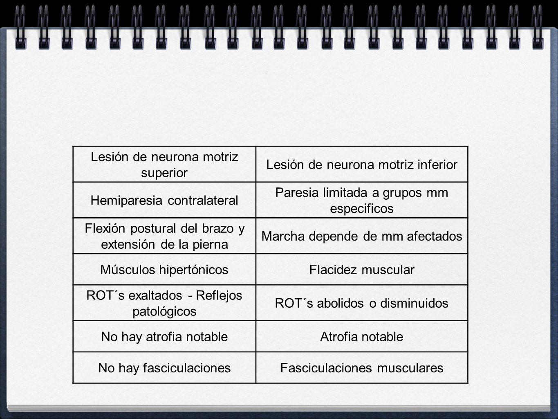 Lesión de neurona motriz superior Lesión de neurona motriz inferior Hemiparesia contralateral Paresia limitada a grupos mm especificos Flexión postura