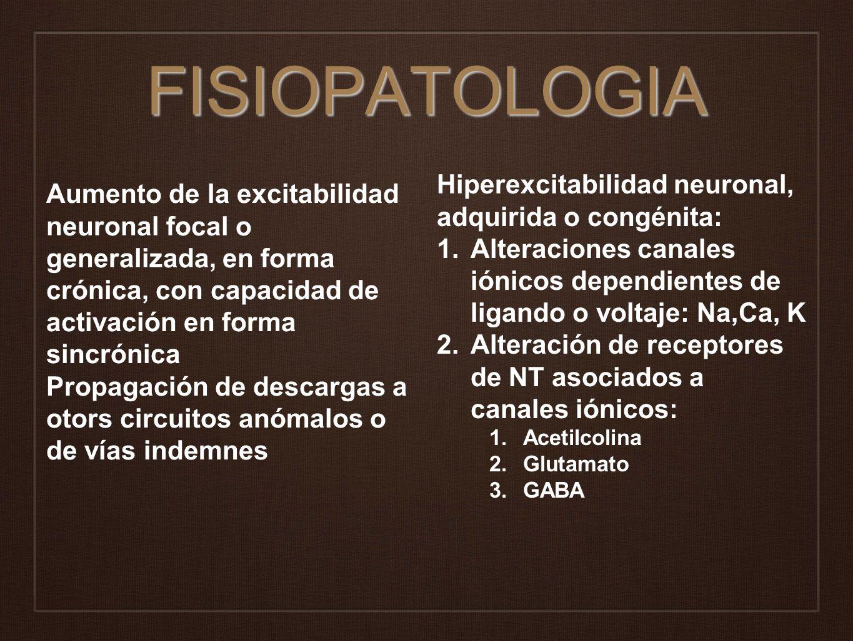 FISIOPATOLOGIA Aumento de la excitabilidad neuronal focal o generalizada, en forma crónica, con capacidad de activación en forma sincrónica Propagació