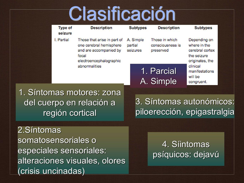 Clasificación 1. Síntomas motores: zona del cuerpo en relación a región cortical 2.Síntomas somatosensoriales o especiales sensoriales: alteraciones v