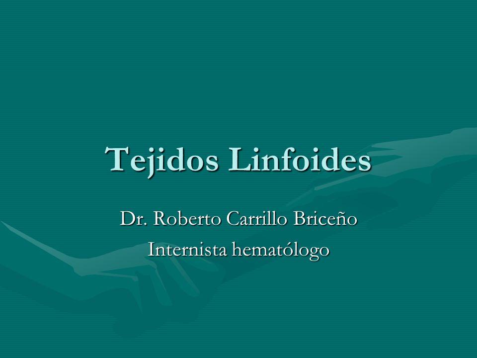 Generalidades Los tejidos linfoides se pueden dividir en: Primarios Secundarios Primarios Secundarios Se desarrollan los primarios a partir de las células progenitoras en linfocitos funcionantes y madurosSe desarrollan los primarios a partir de las células progenitoras en linfocitos funcionantes y maduros El principal tejido linfoide primario es laEl principal tejido linfoide primario es la médula ósea.
