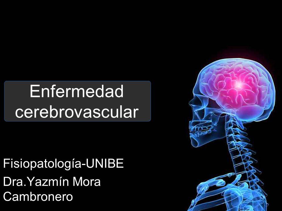 Enfermedad cerebrovascular Fisiopatología-UNIBE Dra.Yazmín Mora Cambronero