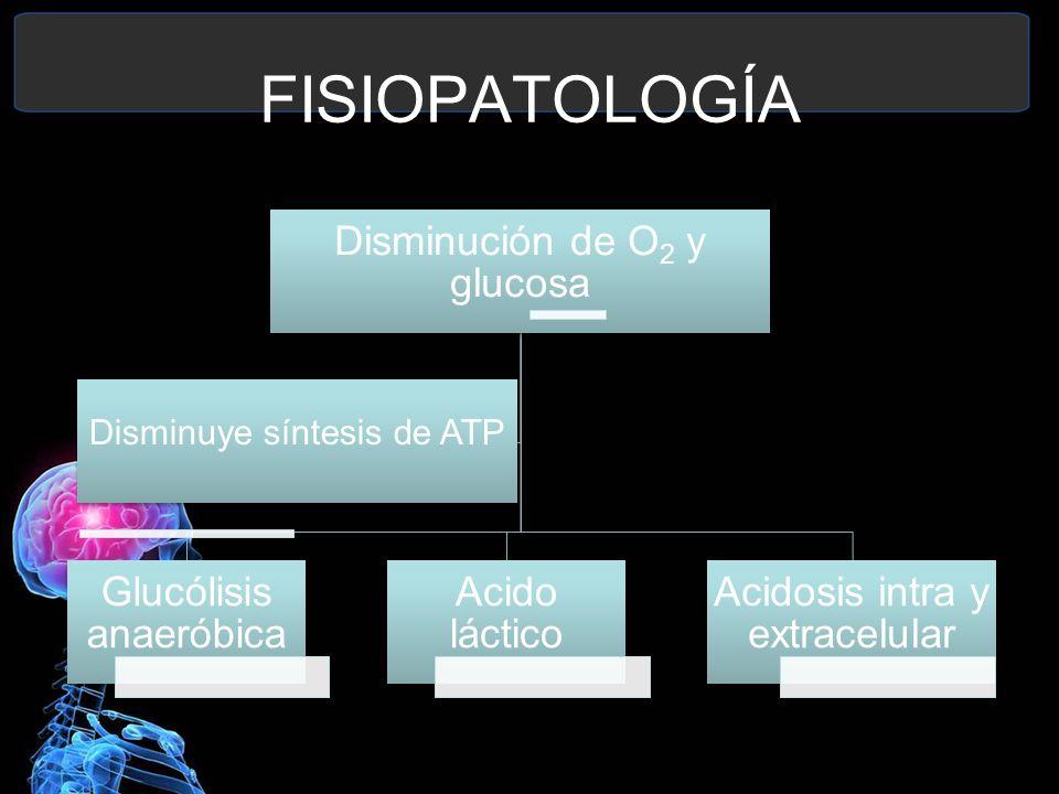 FISIOPATOLOGÍA Disminución de O2 y glucosa Glucólisis anaeróbica Acido láctico Acidosis intra y extracelular Disminuye síntesis de ATP