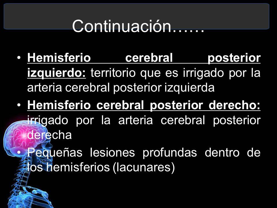 Continuación…… Hemisferio cerebral posterior izquierdo: territorio que es irrigado por la arteria cerebral posterior izquierda Hemisferio cerebral pos