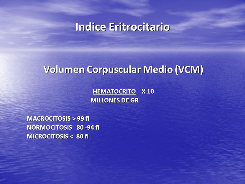 Indice Eritrocitario Volumen Corpuscular Medio (VCM) HEMATOCRITO X 10 MILLONES DE GR MILLONES DE GR MACROCITOSIS > 99 fl NORMOCITOSIS 80 -94 fl MICROC