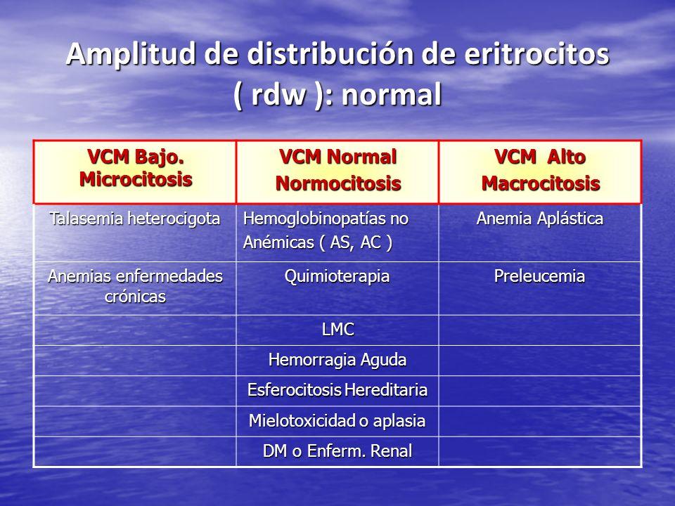 Amplitud de distribución de eritrocitos ( rdw ): normal VCM Bajo. Microcitosis VCM Normal Normocitosis VCM Alto Macrocitosis Talasemia heterocigota He
