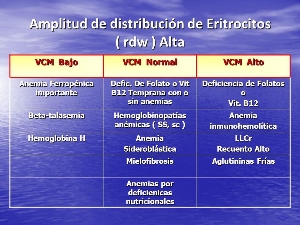 Amplitud de distribución de Eritrocitos ( rdw ) Alta VCM Bajo VCM Normal VCM Alto Anemia Ferropénica importante Defic. De Folato o Vit B12 Temprana co