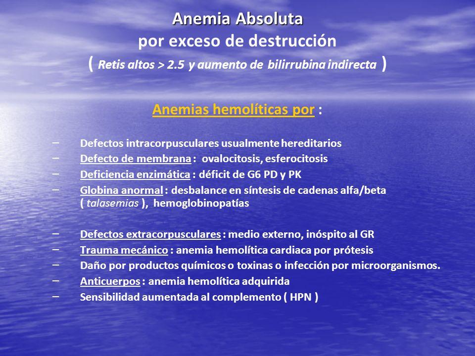 Anemia Absoluta Anemia Absoluta por exceso de destrucción ( Retis altos > 2.5 y aumento de bilirrubina indirecta ) Anemias hemolíticas por : – – Defec