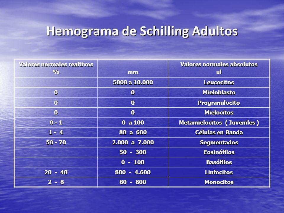 Hemograma de Schilling Adultos Valores normales realtivos %mm Valores normales absolutos ul 5000 a 10.000 Leucocitos 00Mieloblasto 00Progranulocito 00