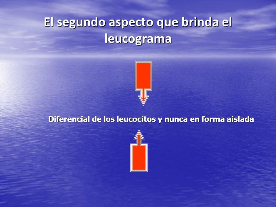 El segundo aspecto que brinda el leucograma Diferencial de los leucocitos y nunca en forma aislada Diferencial de los leucocitos y nunca en forma aisl