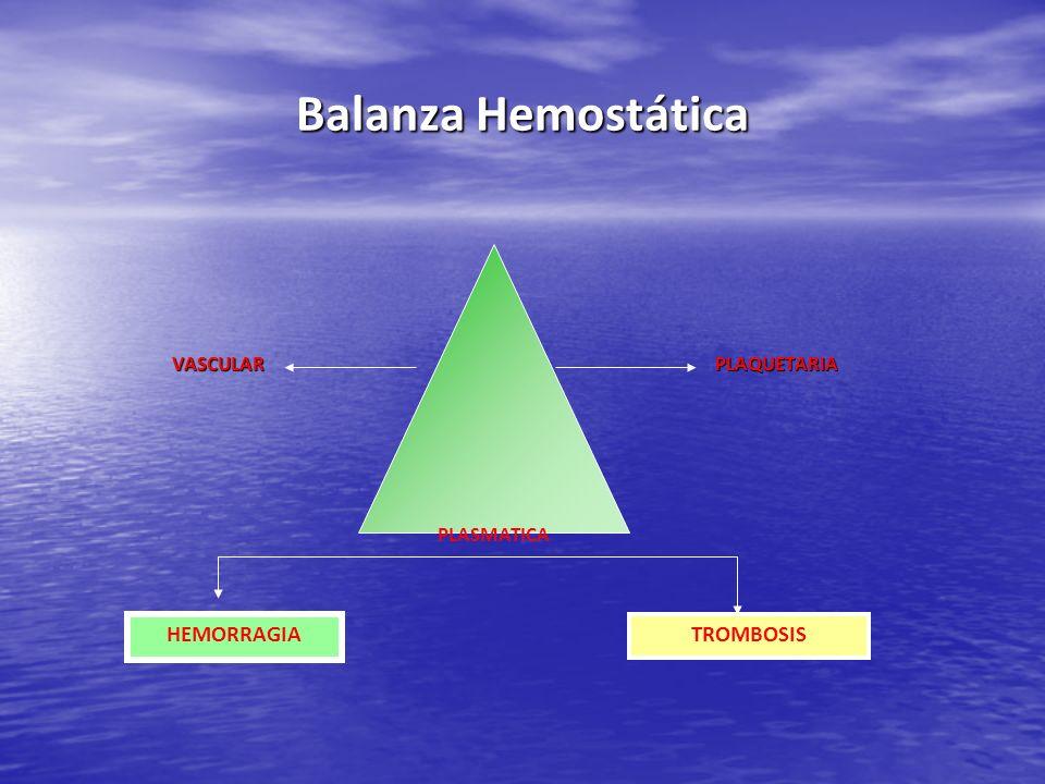 Balanza Hemostática VASCULAR PLAQUETARIA VASCULAR PLAQUETARIA PLASMATICA HEMORRAGIA TROMBOSIS
