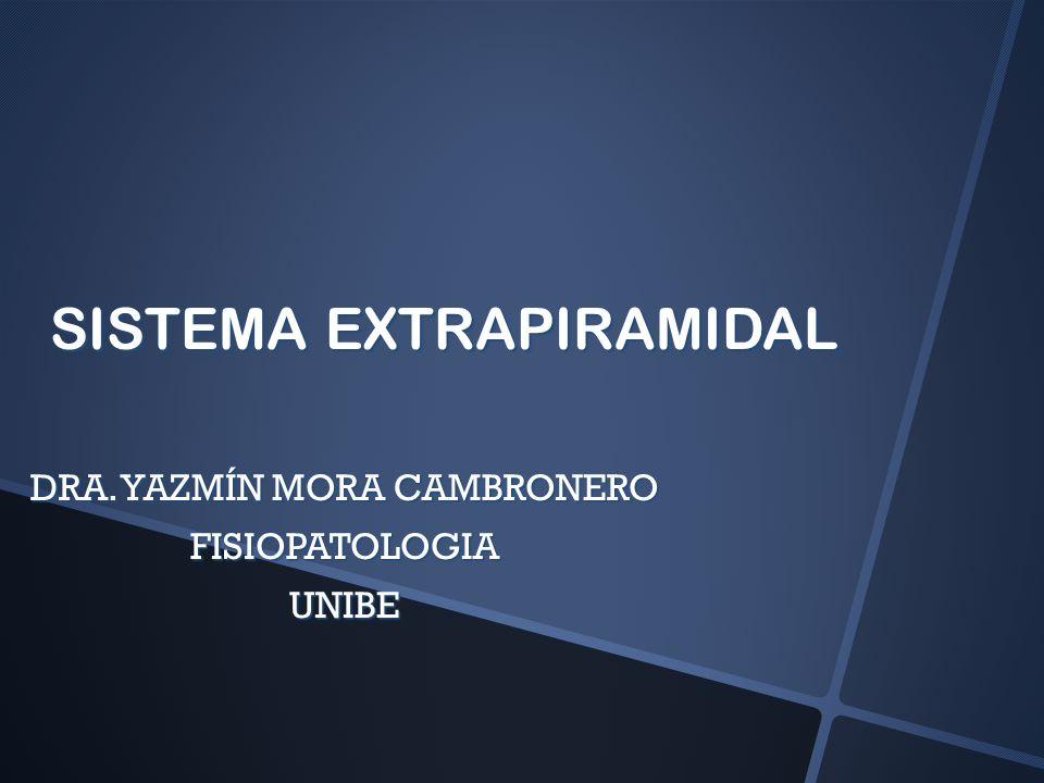 NÚCLEOS BASALES MASAS DE NEURONAS PROFUNDAS EN CADA HEMISFERIO MASAS DE NEURONAS PROFUNDAS EN CADA HEMISFERIO NÚCLEO LENTICULAR NÚCLEO LENTICULAR PUTAMEN + GLOBO PÁLIDO PUTAMEN + GLOBO PÁLIDO NÚCLEO CAUDADO NÚCLEO CAUDADO NÚCLEO SUBTALÁMICO NÚCLEO SUBTALÁMICO DIENCÉFALO DIENCÉFALO SUSTANCIA NEGRA SUSTANCIA NEGRA MESENCÉFALO MESENCÉFALO