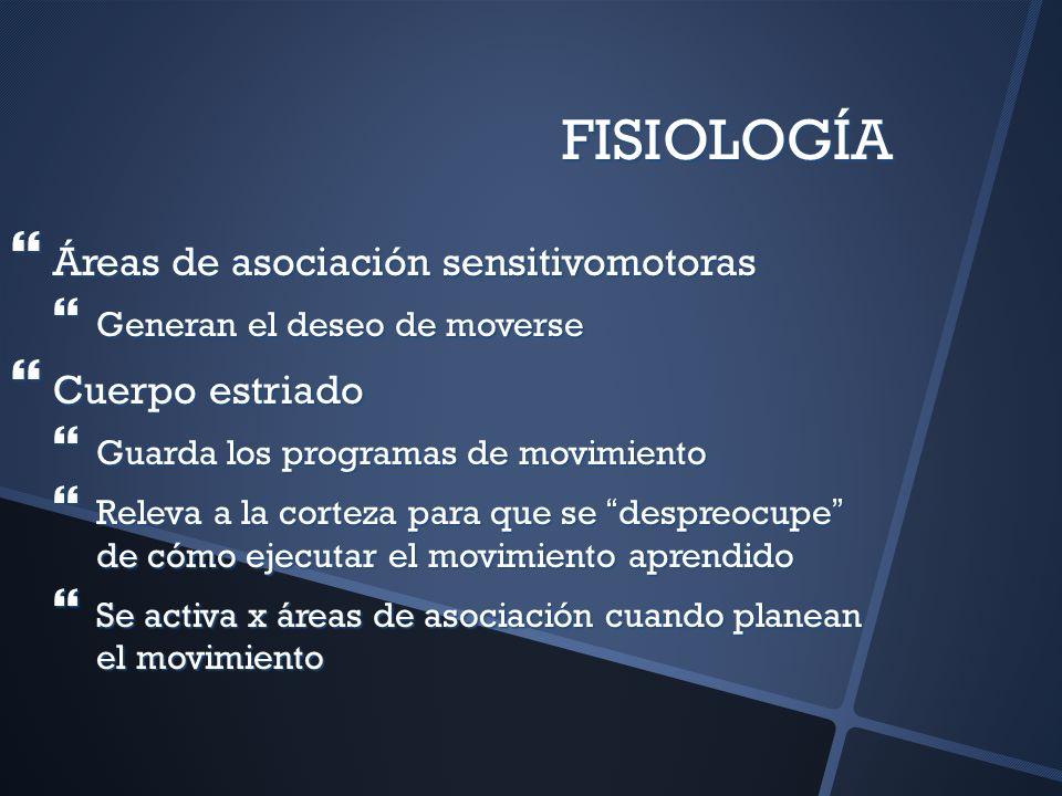 FISIOLOGÍA Áreas de asociación sensitivomotoras Áreas de asociación sensitivomotoras Generan el deseo de moverse Generan el deseo de moverse Cuerpo es
