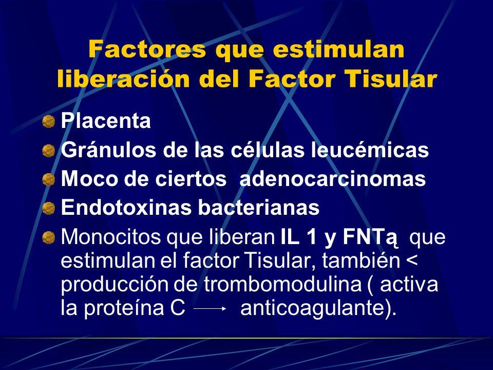 Factores que estimulan liberación del Factor Tisular Placenta Gránulos de las células leucémicas Moco de ciertos adenocarcinomas Endotoxinas bacterian