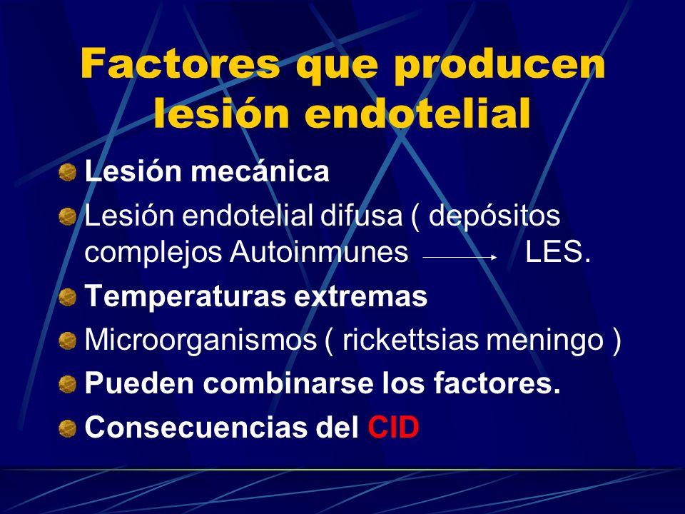 Factores que producen lesión endotelial Lesión mecánica Lesión endotelial difusa ( depósitos complejos Autoinmunes LES. Temperaturas extremas Microorg