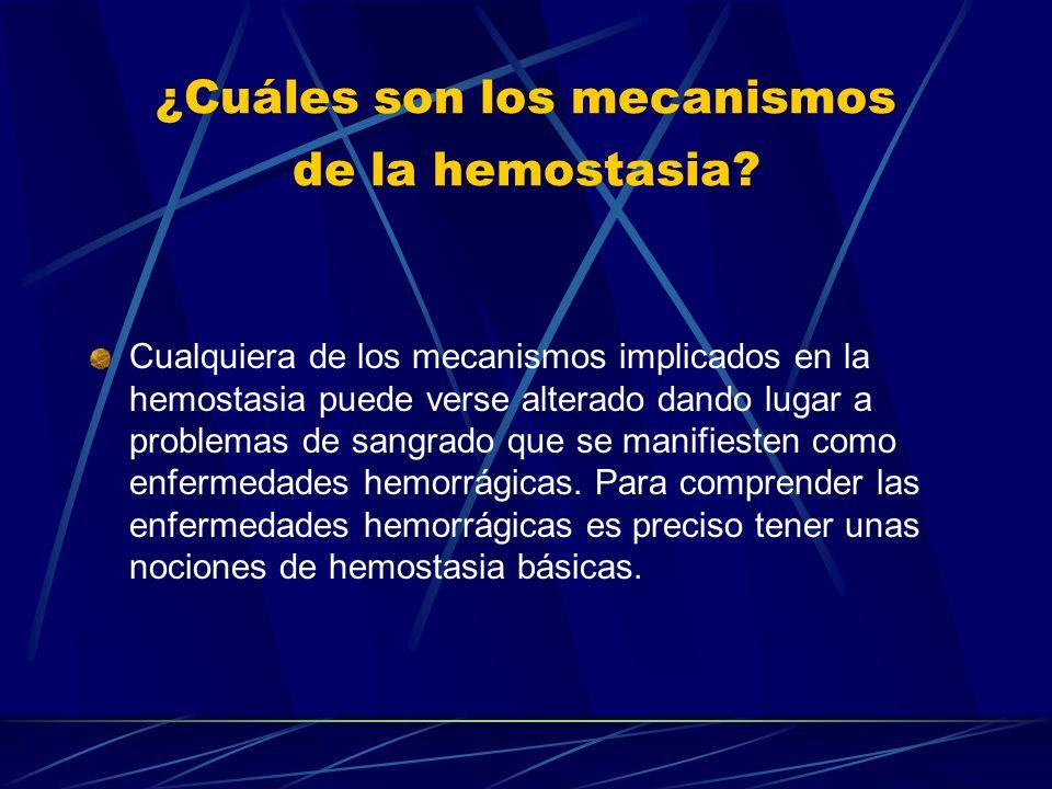 ¿Cuáles son los mecanismos de la hemostasia? Cualquiera de los mecanismos implicados en la hemostasia puede verse alterado dando lugar a problemas de