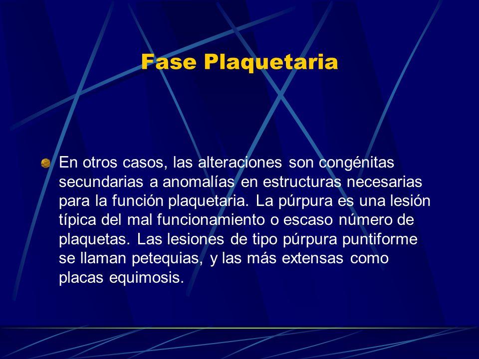 Fase Plaquetaria En otros casos, las alteraciones son congénitas secundarias a anomalías en estructuras necesarias para la función plaquetaria. La púr