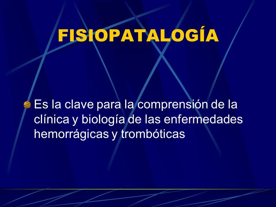 FISIOPATALOGÍA Es la clave para la comprensión de la clínica y biología de las enfermedades hemorrágicas y trombóticas