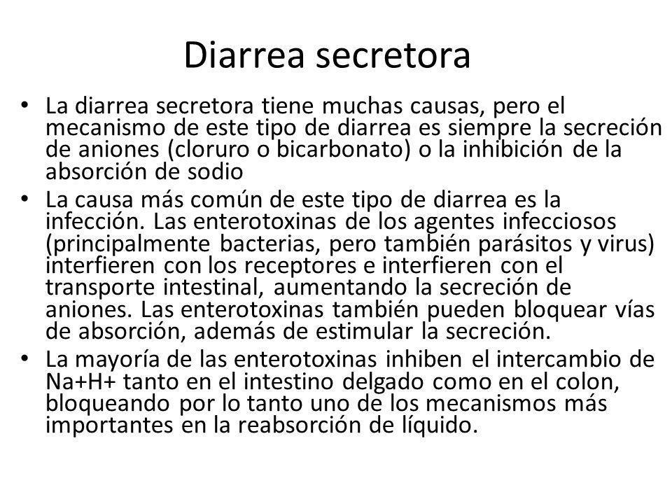 Diarrea secretora La diarrea secretora tiene muchas causas, pero el mecanismo de este tipo de diarrea es siempre la secreción de aniones (cloruro o bi