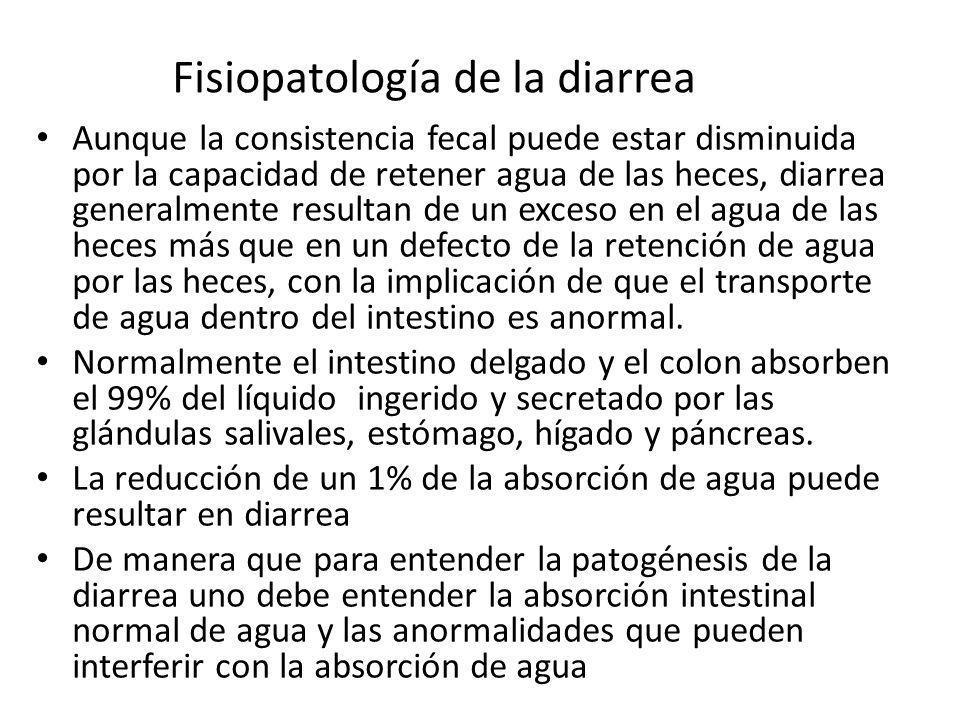 Fisiopatología de la diarrea Aunque la consistencia fecal puede estar disminuida por la capacidad de retener agua de las heces, diarrea generalmente r