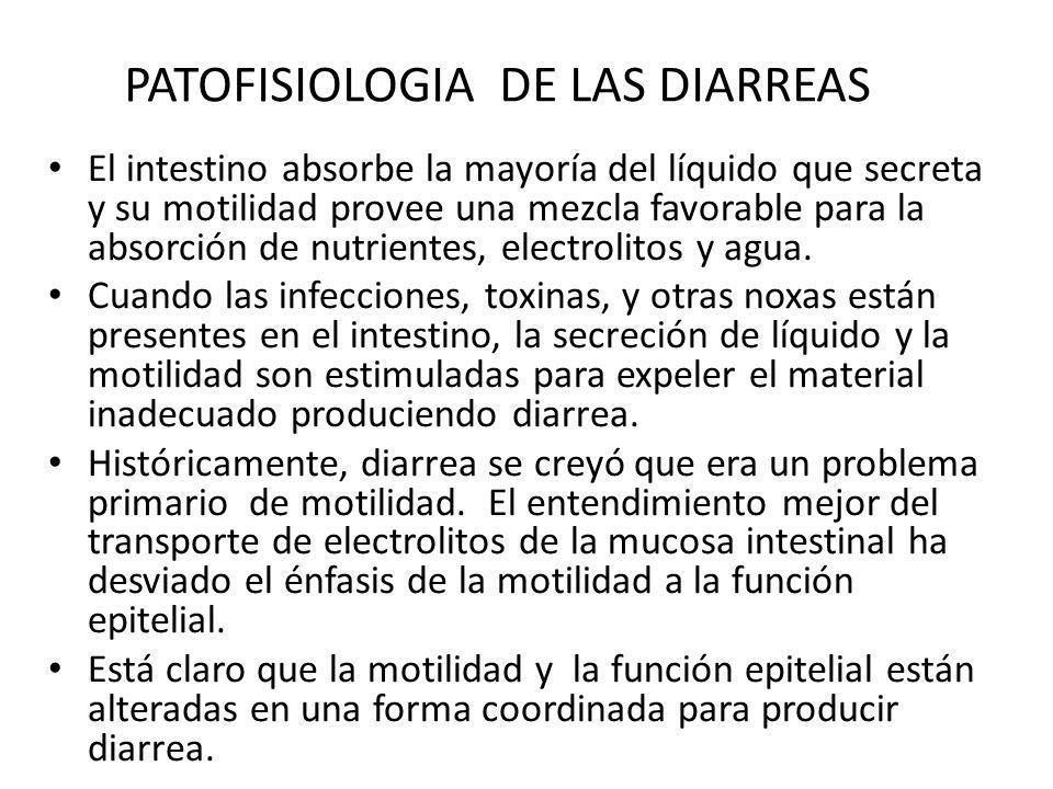 PATOFISIOLOGIA DE LAS DIARREAS El intestino absorbe la mayoría del líquido que secreta y su motilidad provee una mezcla favorable para la absorción de