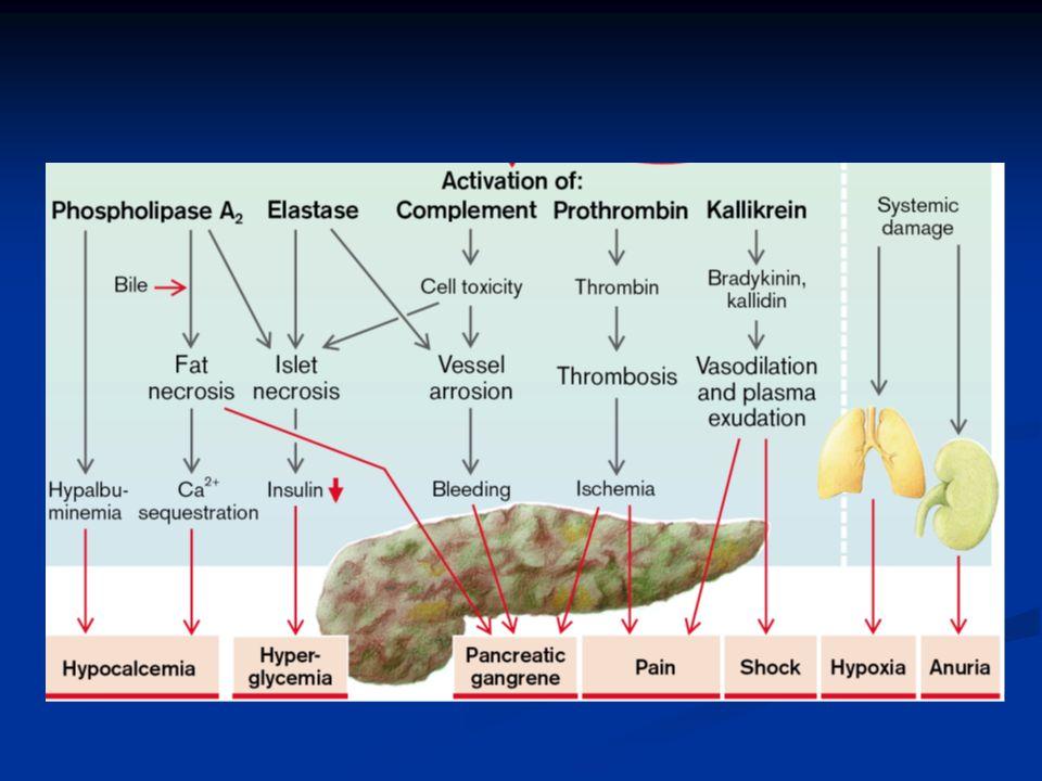 Complicaciones Sistémicas Insuficiencia cardiocirculatoria Insuficiencia Respiratoria (distress) Falla renal Trastornos metabólicos (hiperglicemia, hipocalcemia) CID Encefalopatía Hemorragia digestiva.