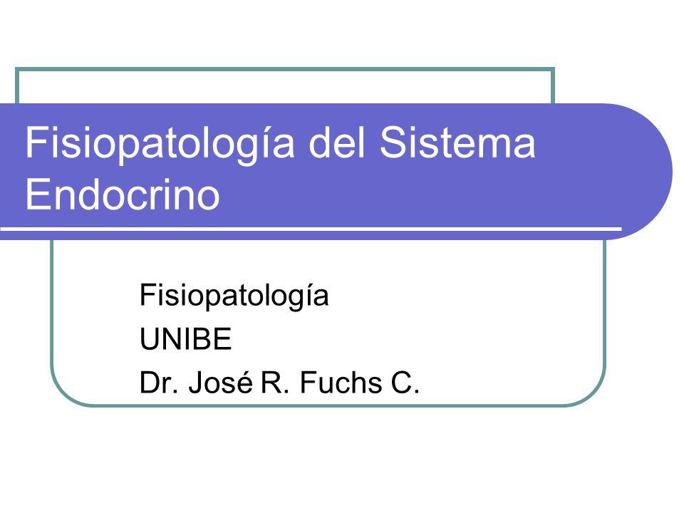 Fisiopatología del Sistema Endocrino Fisiopatología UNIBE Dr. José R. Fuchs C.