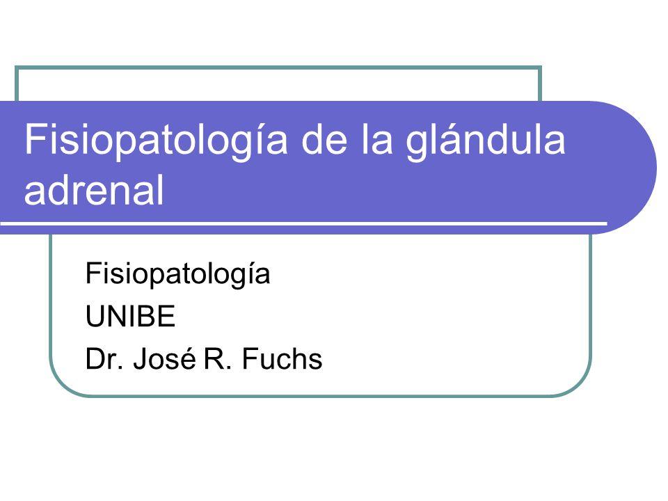 Fisiopatología de la glándula adrenal Fisiopatología UNIBE Dr. José R. Fuchs