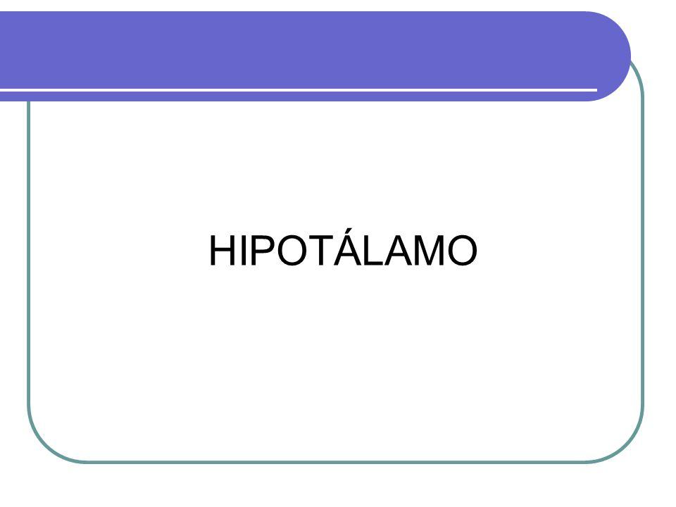 Hipófisis TUMORES DE LA HIPOFISIS 10 al 15% de todas los tumores intracraneanos Microadenomas < 1cm diámetro.