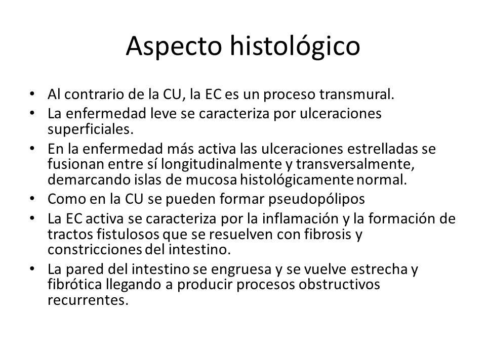 Aspecto histológico Al contrario de la CU, la EC es un proceso transmural. La enfermedad leve se caracteriza por ulceraciones superficiales. En la enf