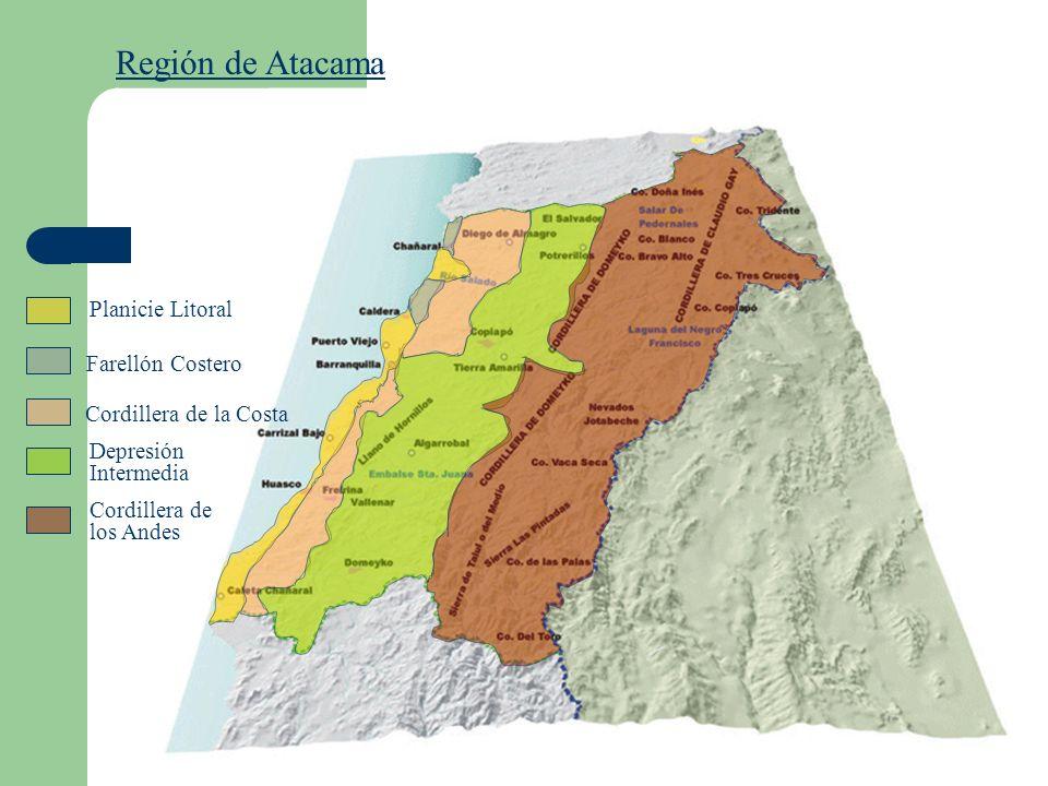 Región de Atacama Planicie Litoral Cordillera de la Costa Depresión Intermedia Cordillera de los Andes Farellón Costero