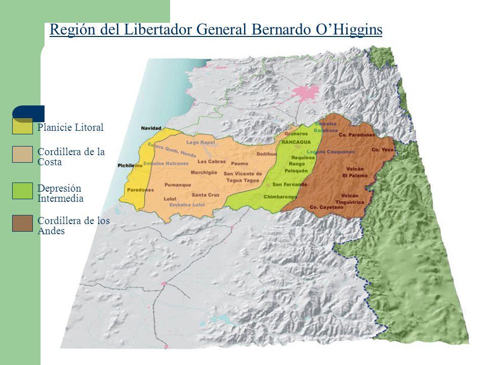 Región del Libertador General Bernardo OHiggins Planicie Litoral Depresión Intermedia Cordillera de la Costa Cordillera de los Andes