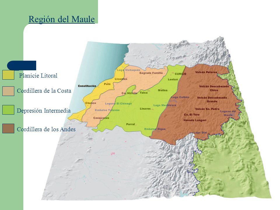 Región del Maule Planicie Litoral Cordillera de la Costa Depresión Intermedia Cordillera de los Andes