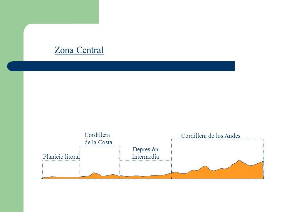 Zona Central Planicie litoral Cordillera de la Costa Cordillera de los Andes Depresión Intermedia
