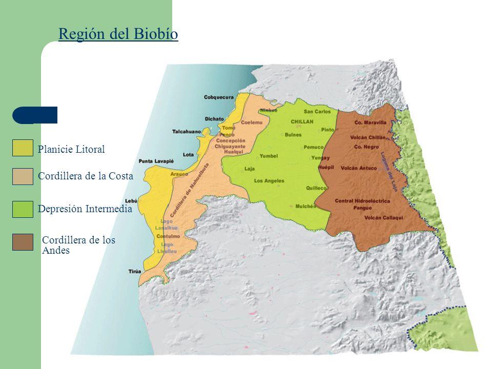 Región del Biobío Planicie Litoral Cordillera de la Costa Depresión Intermedia Cordillera de los Andes