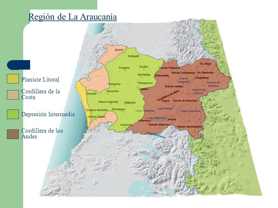 Región de La Araucanía Planicie Litoral Cordillera de la Costa Depresión Intermedia Cordillera de los Andes