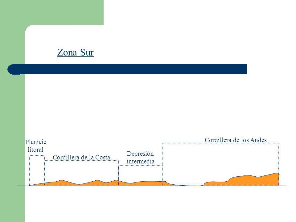 Zona Sur Planicie litoral Cordillera de la Costa Cordillera de los Andes Depresión intermedia