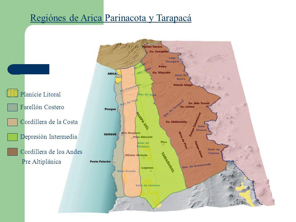 Regiónes de Arica Parinacota y Tarapacá Farellón Costero Cordillera de la Costa Depresión Intermedia Cordillera de los Andes Pre Altiplánica Planicie Litoral