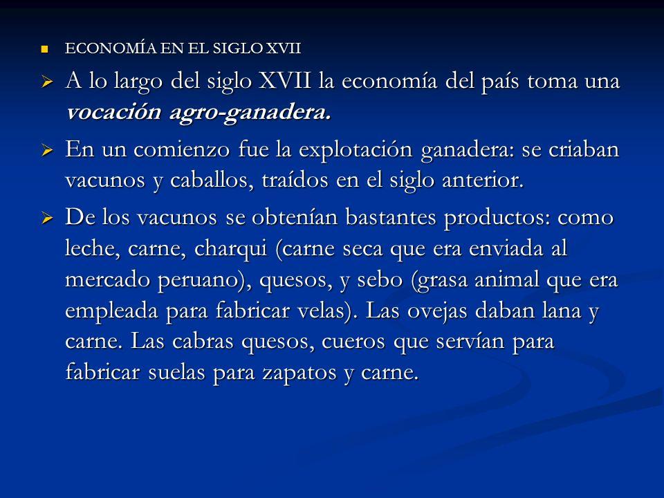 ECONOMÍA EN EL SIGLO XVII ECONOMÍA EN EL SIGLO XVII A lo largo del siglo XVII la economía del país toma una vocación agro-ganadera. A lo largo del sig