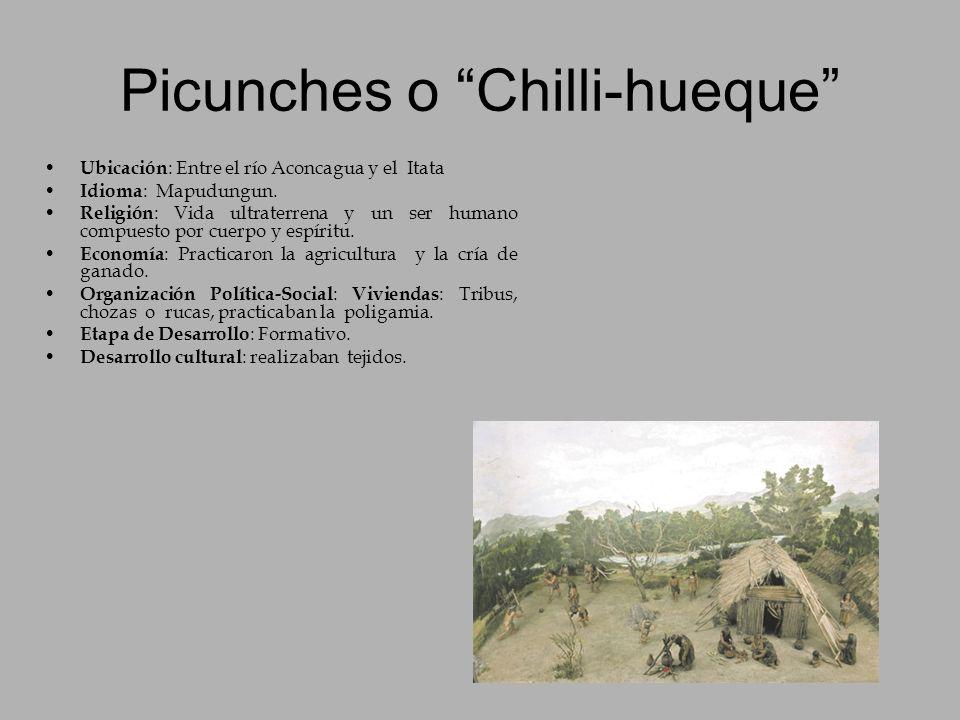 Picunches o Chilli-hueque Ubicación : Entre el río Aconcagua y el Itata Idioma : Mapudungun. Religión : Vida ultraterrena y un ser humano compuesto po