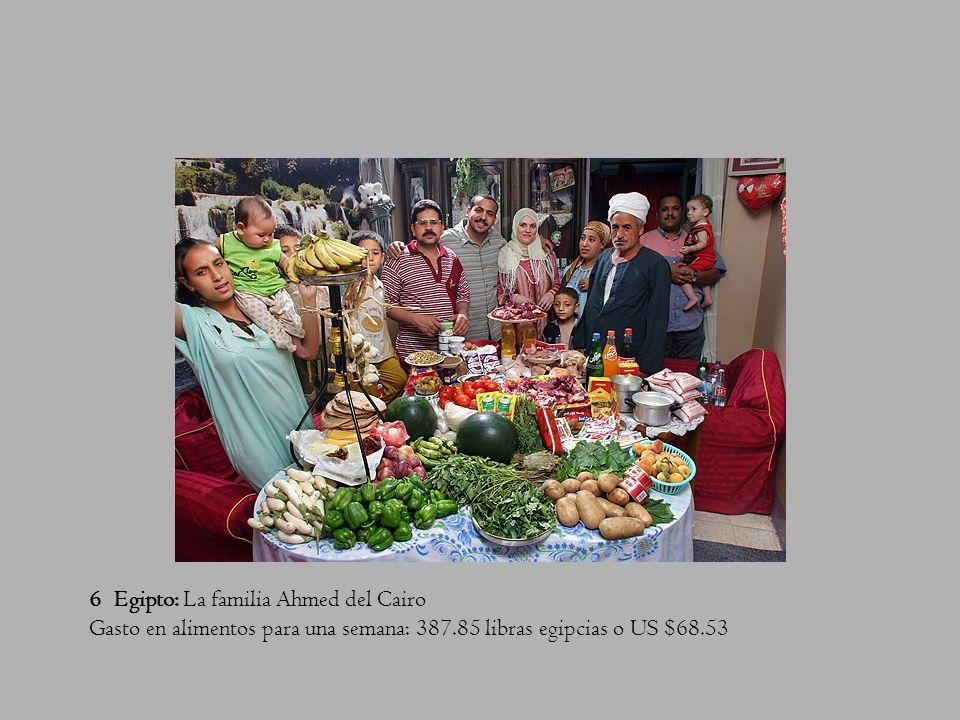 6 Egipto: La familia Ahmed del Cairo Gasto en alimentos para una semana: 387.85 libras egipcias o US $68.53