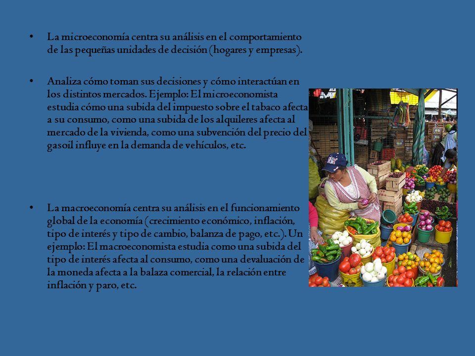 La microeconomía centra su análisis en el comportamiento de las pequeñas unidades de decisión (hogares y empresas).