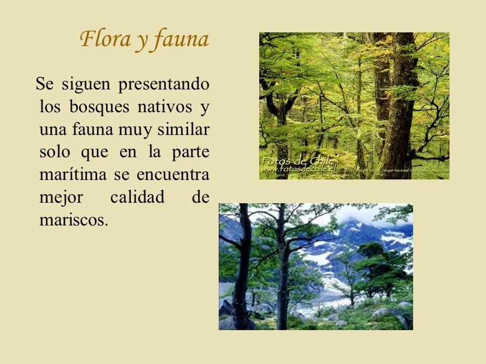 F lora y fauna Se siguen presentando los bosques nativos y una fauna muy similar solo que en la parte marítima se encuentra mejor calidad de mariscos.