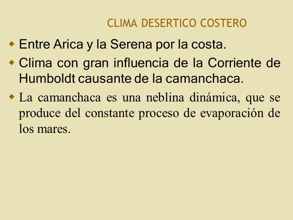 C LIMA DESERTICO COSTERO Entre Arica y la Serena por la costa.
