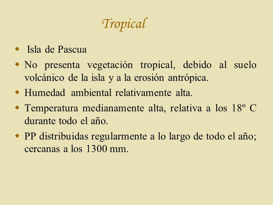 Tropical Isla de Pascua No presenta vegetación tropical, debido al suelo volcánico de la isla y a la erosión antrópica.
