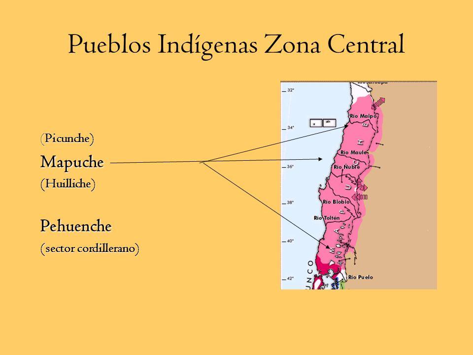 Diaguitas Pueblo sedentario agroalfarero y cazador Habitaban los valles transversales entre los ríos Copiapo y Choapa Practicaron la agricultura, gana