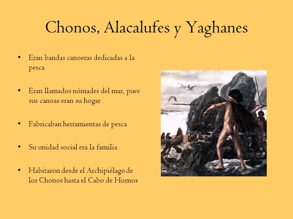 Tehuelches Eran bandas nómades cazadoras y recolectoras También llamados Patagones Habitaron la Patagonia Su vestuario se compone de taparrabos, de un