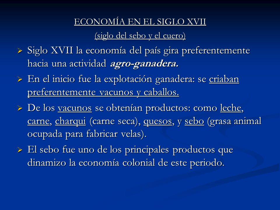 ECONOMÍA EN EL SIGLO XVII (siglo del sebo y el cuero) Siglo XVII la economía del país gira preferentemente hacia una actividad agro-ganadera. Siglo XV