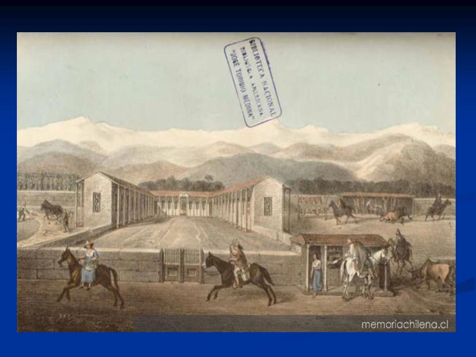 ECONOMÍA EN EL SIGLO XVIII: (el siglo del trigo) Siglo XVIII, Chile continuaba explotando sus riquezas agroganaderas.